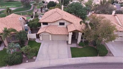 Chandler Single Family Home For Sale: 1655 W Honeysuckle Lane