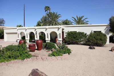 Fountain Hills Single Family Home For Sale: 11011 N Indian Wells Drive
