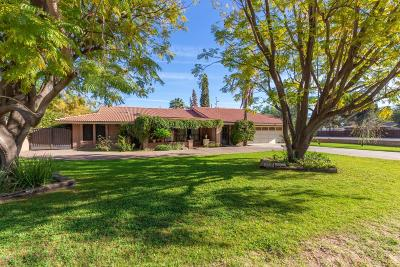 Phoenix Single Family Home For Sale: 700 W Drey Drive