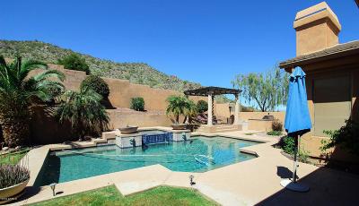 Fountain Hills Single Family Home For Sale: 13542 N Manzanita Lane