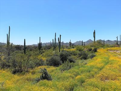 Cave Creek Residential Lots & Land For Sale: E Fleming Springs Road