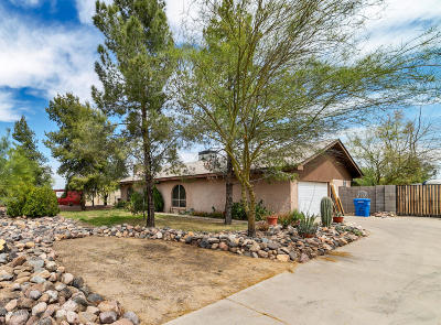 Maricopa County, Pinal County Single Family Home For Sale: 11441 N 24th Street N
