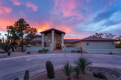 Sun City Single Family Home For Sale: 9330 N 111th Drive