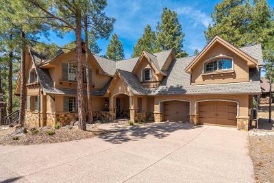 Flagstaff Single Family Home For Sale: 3310 S Tourmaline Drive