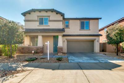 Surprise Single Family Home For Sale: 15555 W Jenan Drive