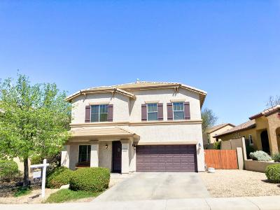 Anthem Single Family Home For Sale: 3818 W Rushmore Drive