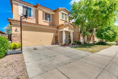 San Tan Valley Single Family Home For Sale: 3556 E Longhorn Street
