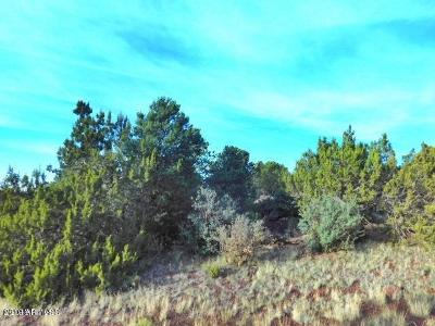 Williams AZ Residential Lots & Land For Sale: $9,999