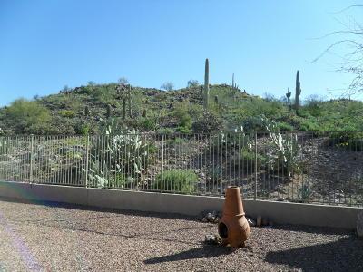 Gold Canyon Rental For Rent: 5169 S Casa Prieto Drive