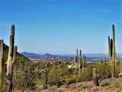Residential Lots & Land For Sale: 10500 E Lost Canyon Drive