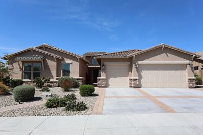 Goodyear, Waddell Single Family Home For Sale: 12110 S 181st Drive