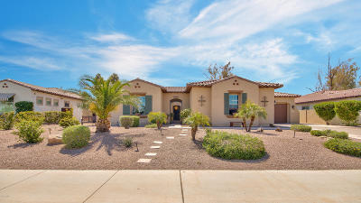 Litchfield Park Single Family Home For Sale: 14551 W Mountain View Drive