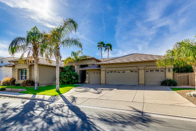 Chandler Single Family Home For Sale: 3592 S Agave Way