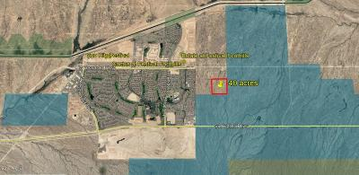 Surprise Residential Lots & Land For Sale: W Beardsley Road