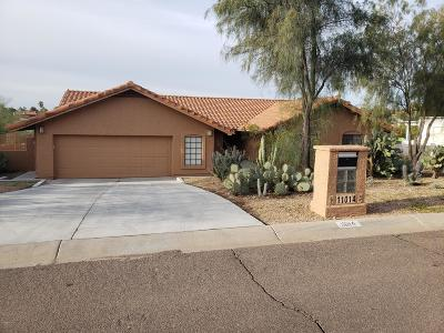 Fountain Hills Single Family Home For Sale: 11014 N Valley Drive