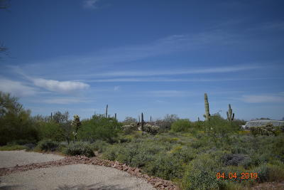 Apache Junction Residential Lots & Land For Sale: 6250 E 10th Avenue