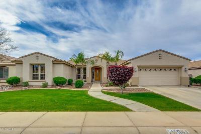 Mesa Single Family Home For Sale: 11541 E Roselle Avenue