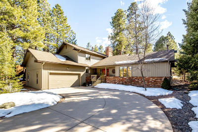 Flagstaff Single Family Home For Sale: 4707 W High Timber Lane