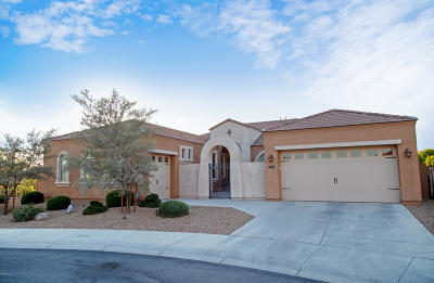 Queen Creek Single Family Home For Sale: 22956 S 221st Place