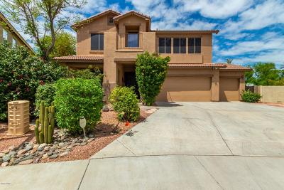 Surprise Single Family Home For Sale: 14534 N 138th Lane
