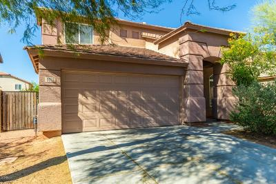 Tolleson Single Family Home For Sale: 9212 W Williams Street