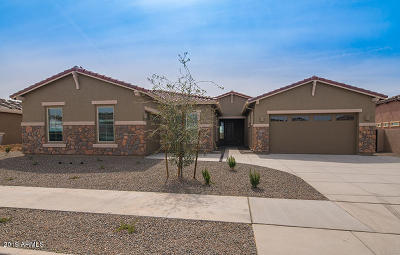 Queen Creek Single Family Home For Sale: 21489 E Misty Lane