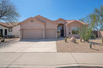 Cave Creek Single Family Home For Sale: 4801 E Peak View Road