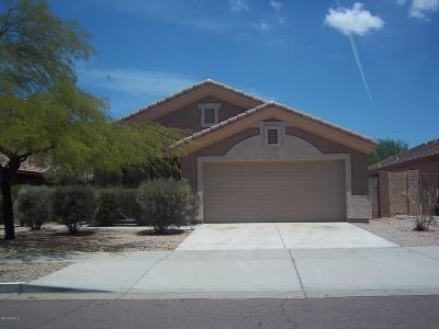 Goodyear Single Family Home For Sale: 17526 W Coyote Trail Drive