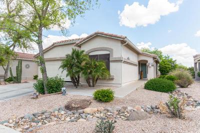 Gilbert Single Family Home For Sale: 5023 S Lantana Lane