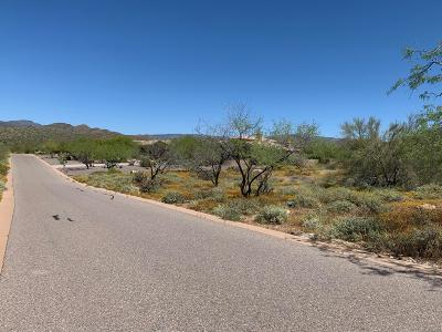 Cave Creek Residential Lots & Land For Sale: 34695 N 45th Street