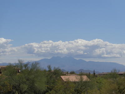 Fountain Hills Residential Lots & Land For Sale: 15705 E Princess Court