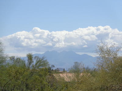 Fountain Hills AZ Residential Lots & Land For Sale: $175,000