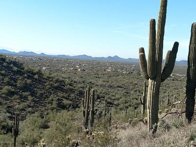 Cave Creek Residential Lots & Land For Sale: 5800 E Surrey Drive