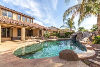 Gilbert Single Family Home For Sale: 4112 E Saraband Way