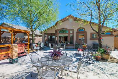 San Tan Valley Single Family Home For Sale: 78 W Diamond Trail