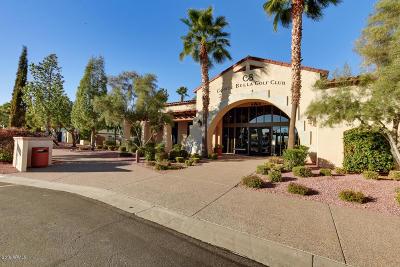 Sun City West Rental For Rent: 23120 N Via Vistosa Drive