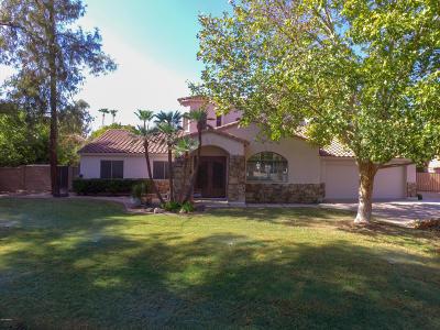 Phoenix Single Family Home For Sale: 202 E Brook Hollow Drive