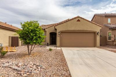San Tan Valley Single Family Home For Sale: 715 E Blossom Road