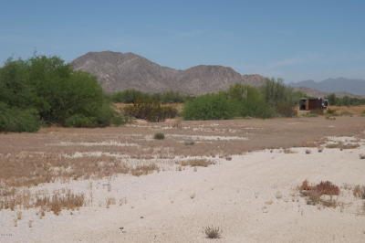 Buckeye Residential Lots & Land For Sale: 20900 W Queen Creek Road