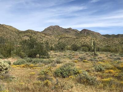 Scottsdale Residential Lots & Land For Sale: 10500 E Lost Canyon Drive