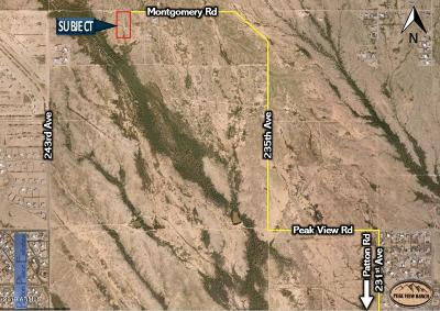 Wittmann AZ Residential Lots & Land For Sale: $48,000