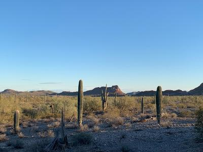Queen Creek AZ Residential Lots & Land For Sale: $178,000
