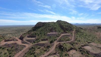 Queen Creek AZ Residential Lots & Land For Sale: $600,000
