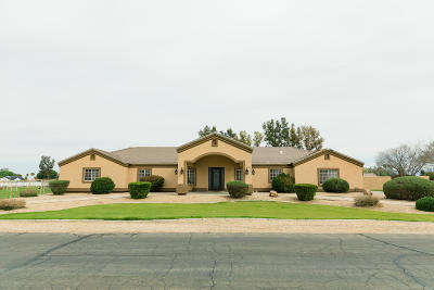 San Tan Valley Single Family Home For Sale: 756 W Via De Palmas Road