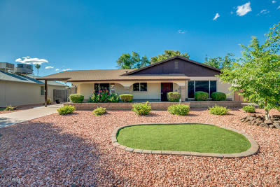 Tempe Single Family Home For Sale: 420 E Tulane Drive