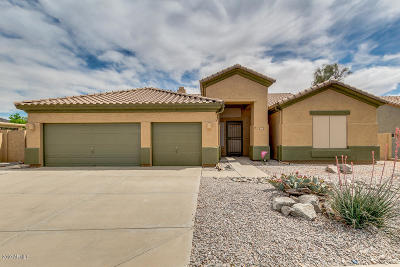 Goodyear Single Family Home For Sale: 17731 W Summit Drive