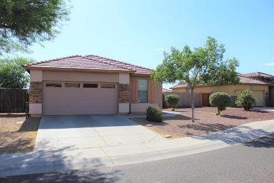 Buckeye Single Family Home For Sale: 5224 S Dove Butte