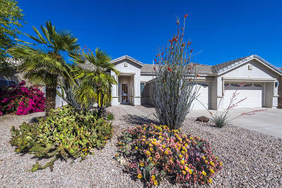 Chandler Single Family Home For Sale: 5101 S McClelland Drive