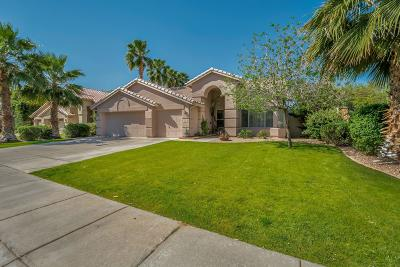 Chandler Single Family Home For Sale: 3360 S Pleasant Place