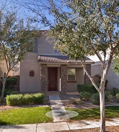 Gilbert Single Family Home For Sale: 4333 E Milky Way